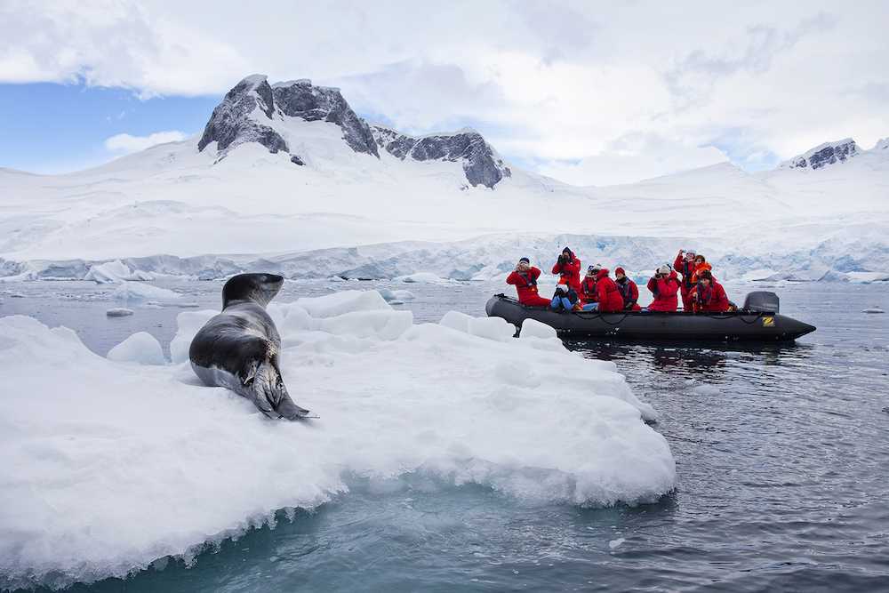 12 reasons an antarctic cruise should be at the top of